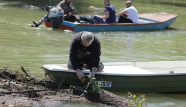 Turistička organizacija grada Pančeva izvlačila stabla iz plovnog puta reke Tamiš